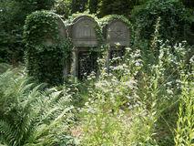 piedra-grave-overgrown-en-un-cementerio-52853644